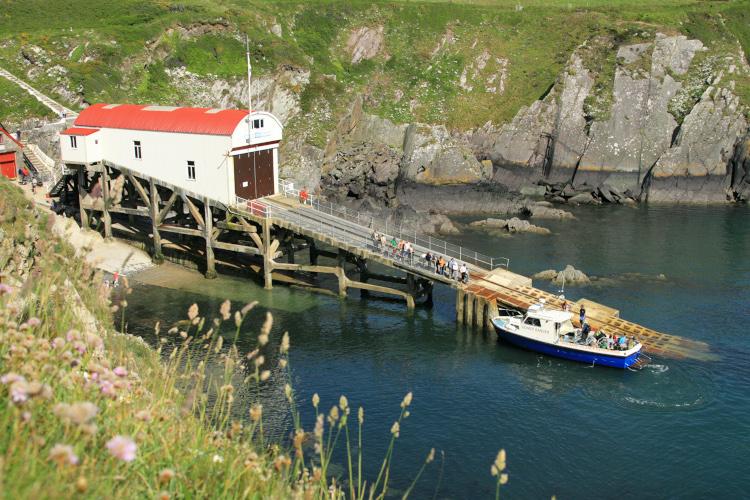 Pembrokeshire boat trip