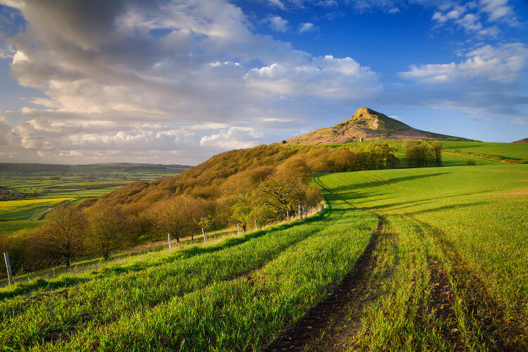 Roseberry Topping and Captain Cook's Monument