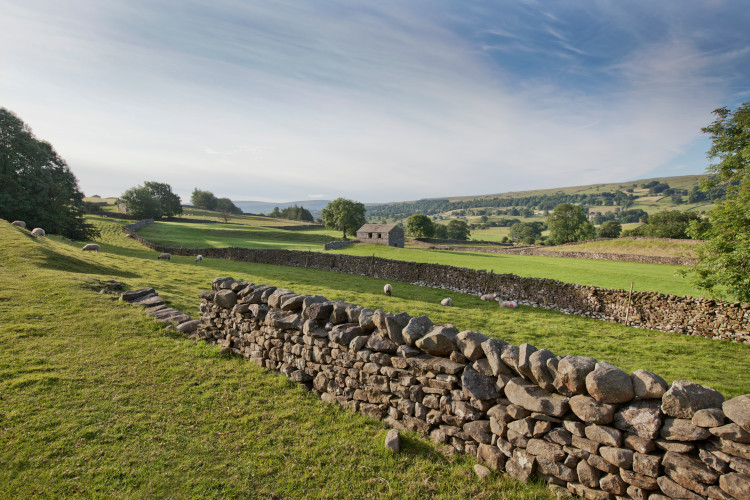 Leyburn countryside