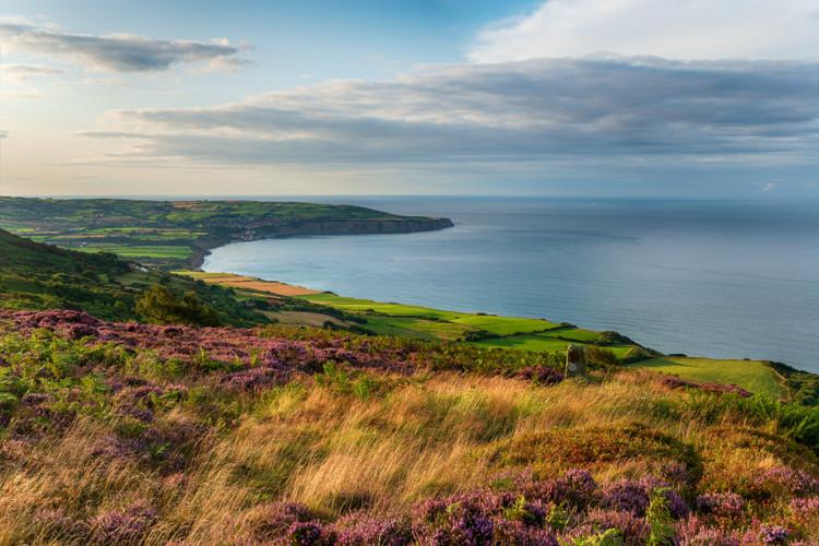 Yorkshire Coast walks